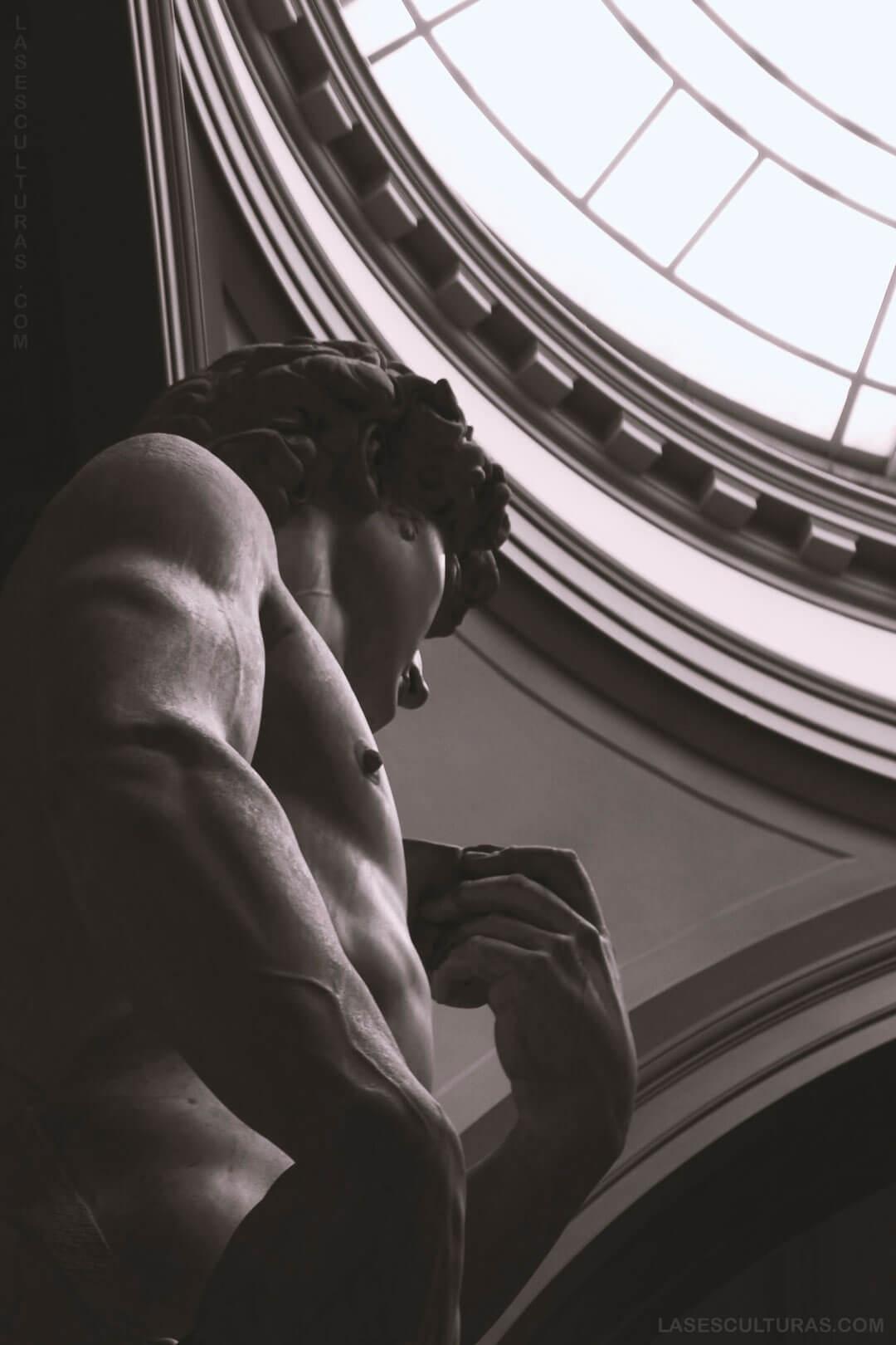 estatua de david